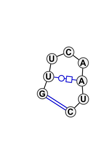 HL_05993.1