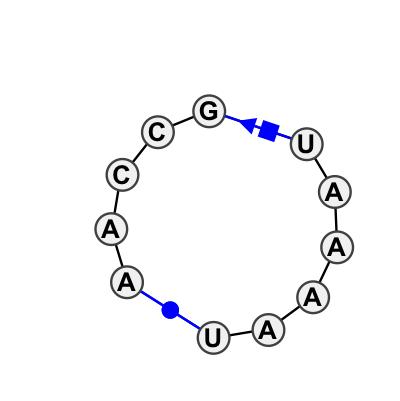 HL_12679.1
