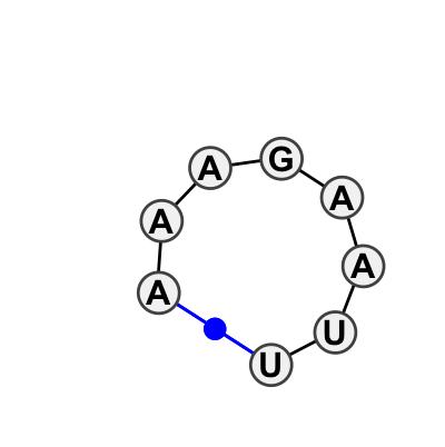 HL_18213.1