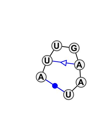 HL_18288.1