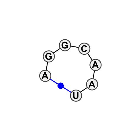 HL_48426.1