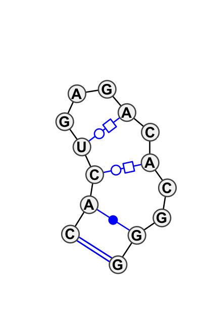 HL_65924.1