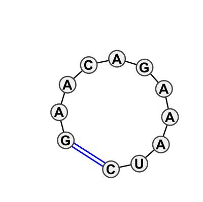 HL_80301.1