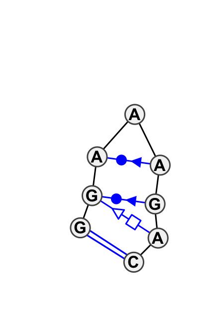 HL_80492.1