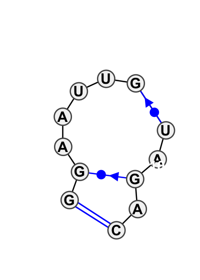 HL_01504.1