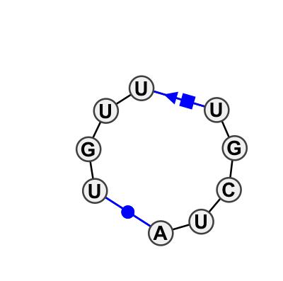 HL_04325.1
