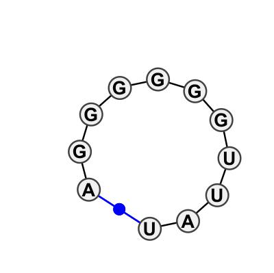 HL_11061.2