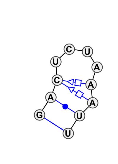 HL_16981.1