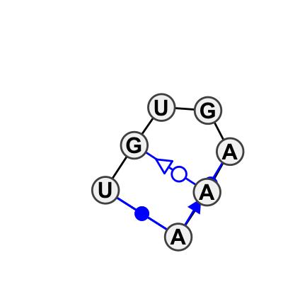 HL_41117.1