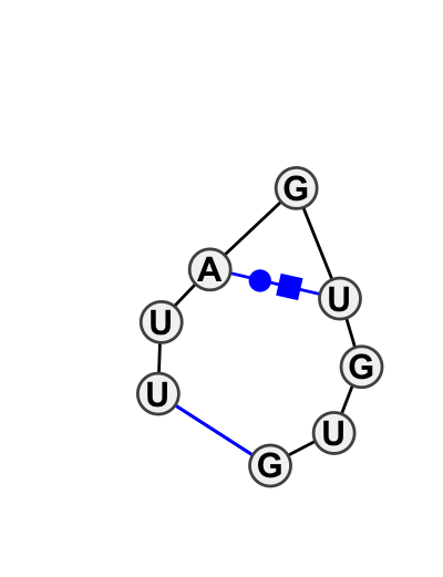 HL_58556.1