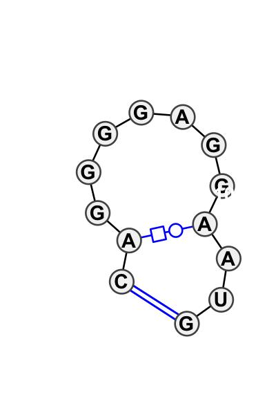 HL_98577.1