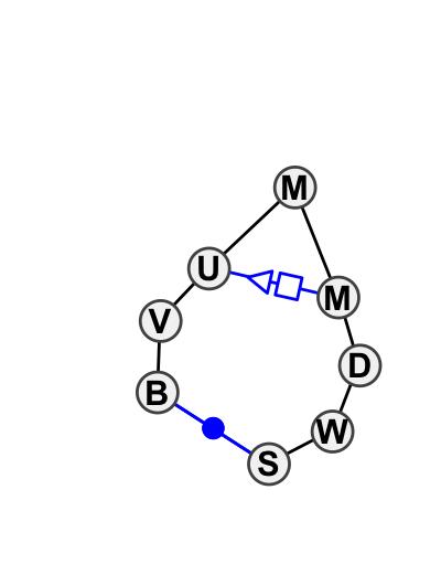HL_01926.1