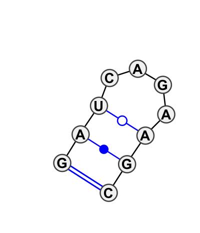 HL_94145.1