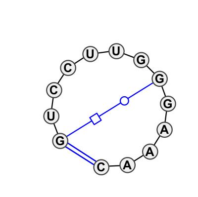 HL_45358.1