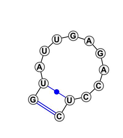 HL_55202.1
