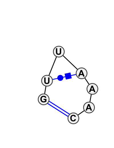HL_93428.1