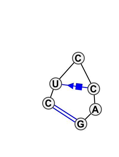 HL_19074.1