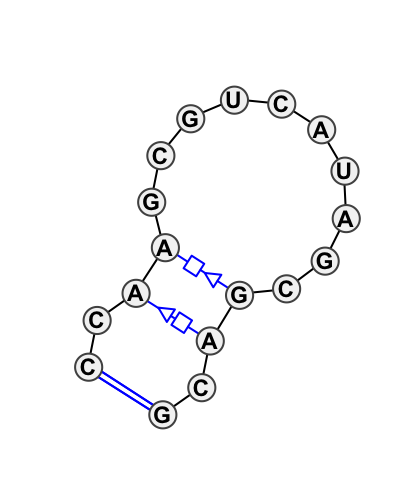 HL_65107.1