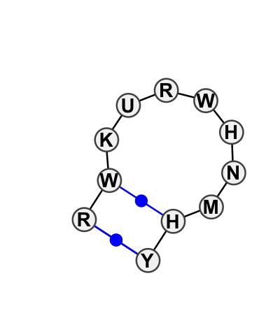 HL_19066.1