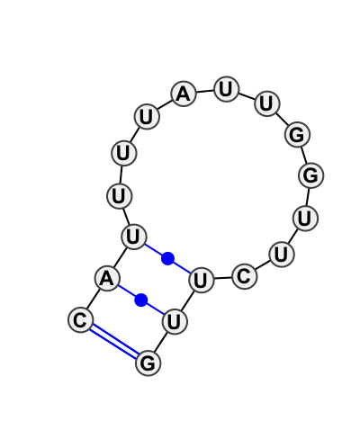 HL_42161.1