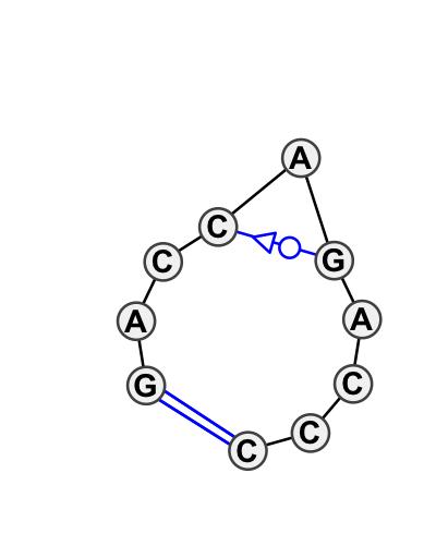 HL_17008.1