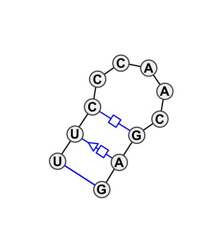 HL_65802.1