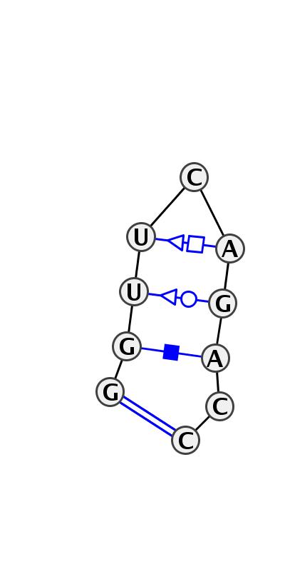 HL_17554.1
