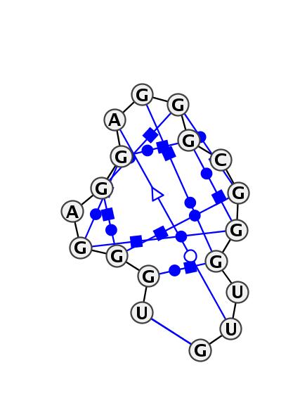 HL_55428.1
