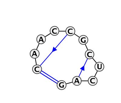HL_72162.1