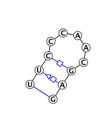 HL_77064.1