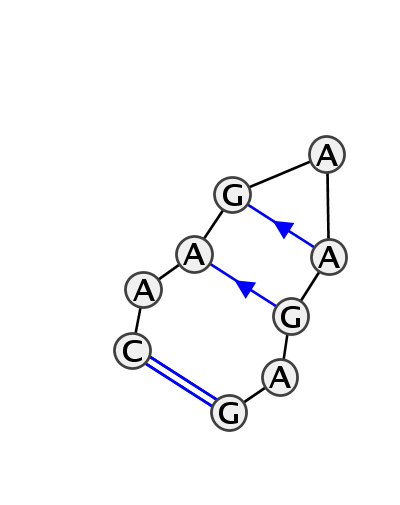 HL_06048.1