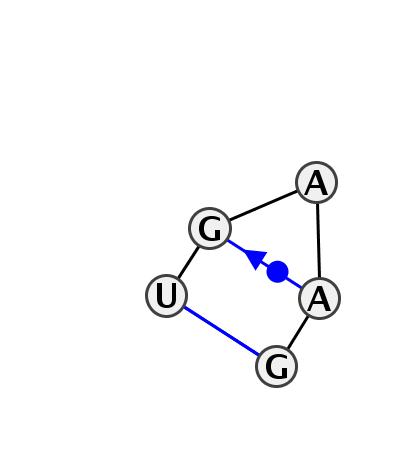HL_77081.1