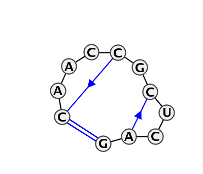 HL_08602.1