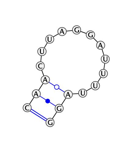 HL_82866.1