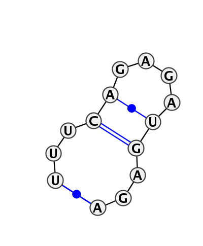 HL_85984.1