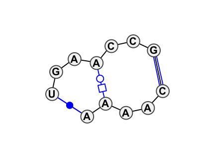 IL_02449.1