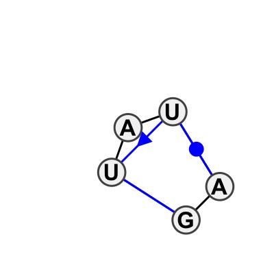IL_20796.1