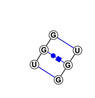 IL_24704.1