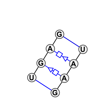 IL_52375.1