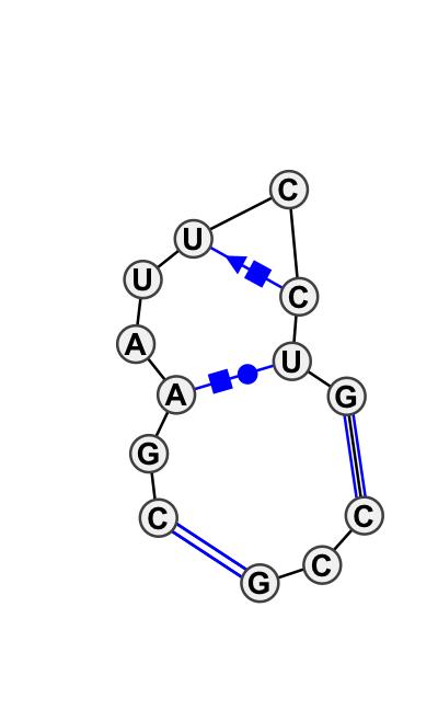 IL_41864.1
