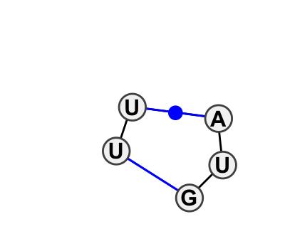 IL_00906.1