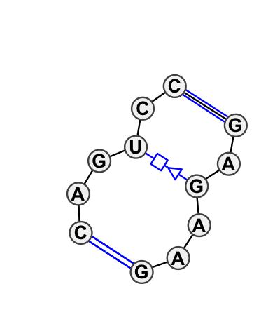 IL_34405.1