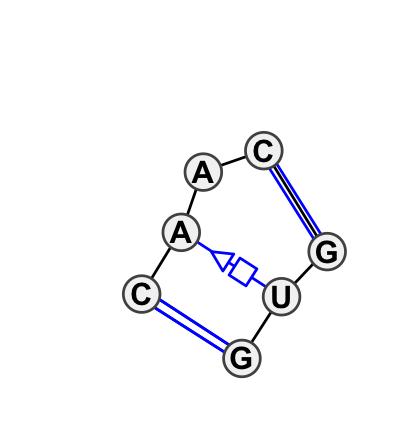 IL_57863.1
