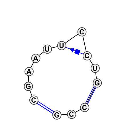IL_82854.1