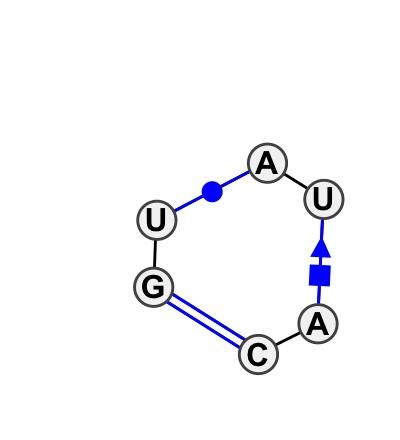 IL_17977.1