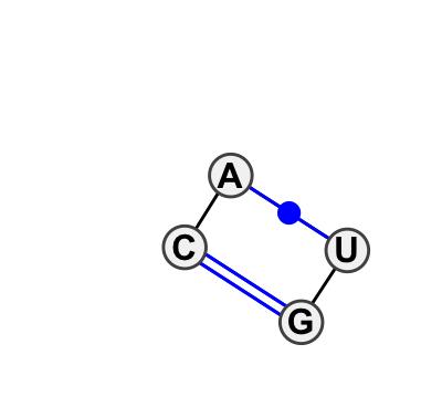 IL_43856.1