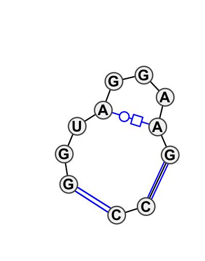IL_84308.1