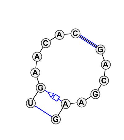 IL_44310.1