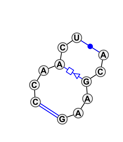 IL_54826.1