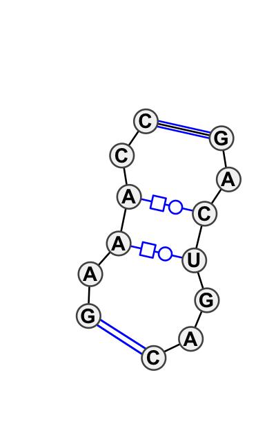 IL_63952.1